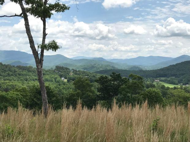view near cabin