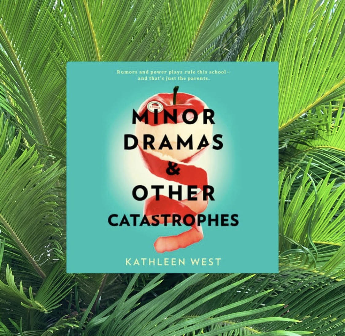minor dramas and other catastrophes